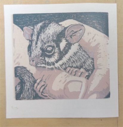 Poss in hand - the stages of a reduction linocut - Jenn White