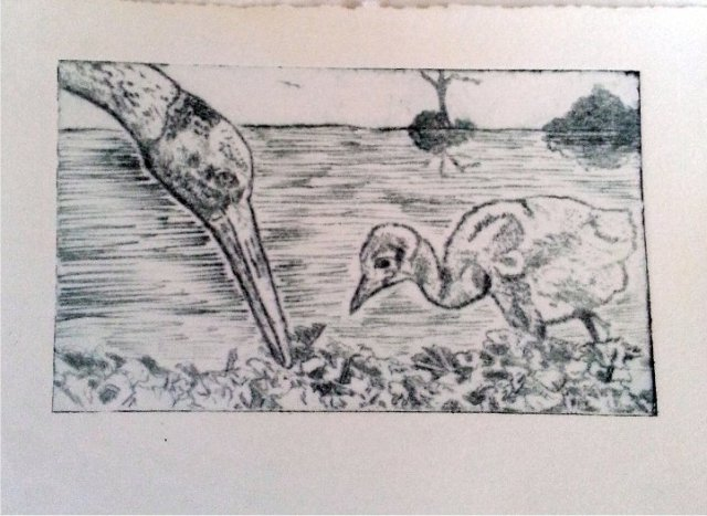 Learning Survival Skills - Drypoint ecthing - Jenn White